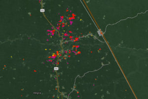 Environmental Eye from the Sky to Monitor Forests
